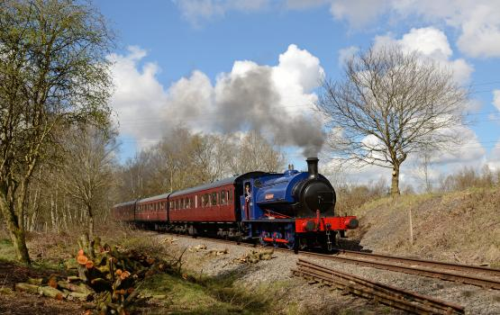 Fun days Out - Chasewater Railway