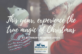 Christmas Lapland Experience at Blithbury Reindeer Lodge